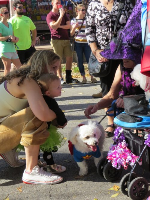 Nicki's Central West End Guide CWE Pets Events, Sightings Food and Drink For Children Shop News  Trish Bush Maryland Plaza La Petite Spa Halloween pet parade Frances Thompson explorestlouis/centralwestend Dennis Gorg CWE Scene Central West End Cassie's