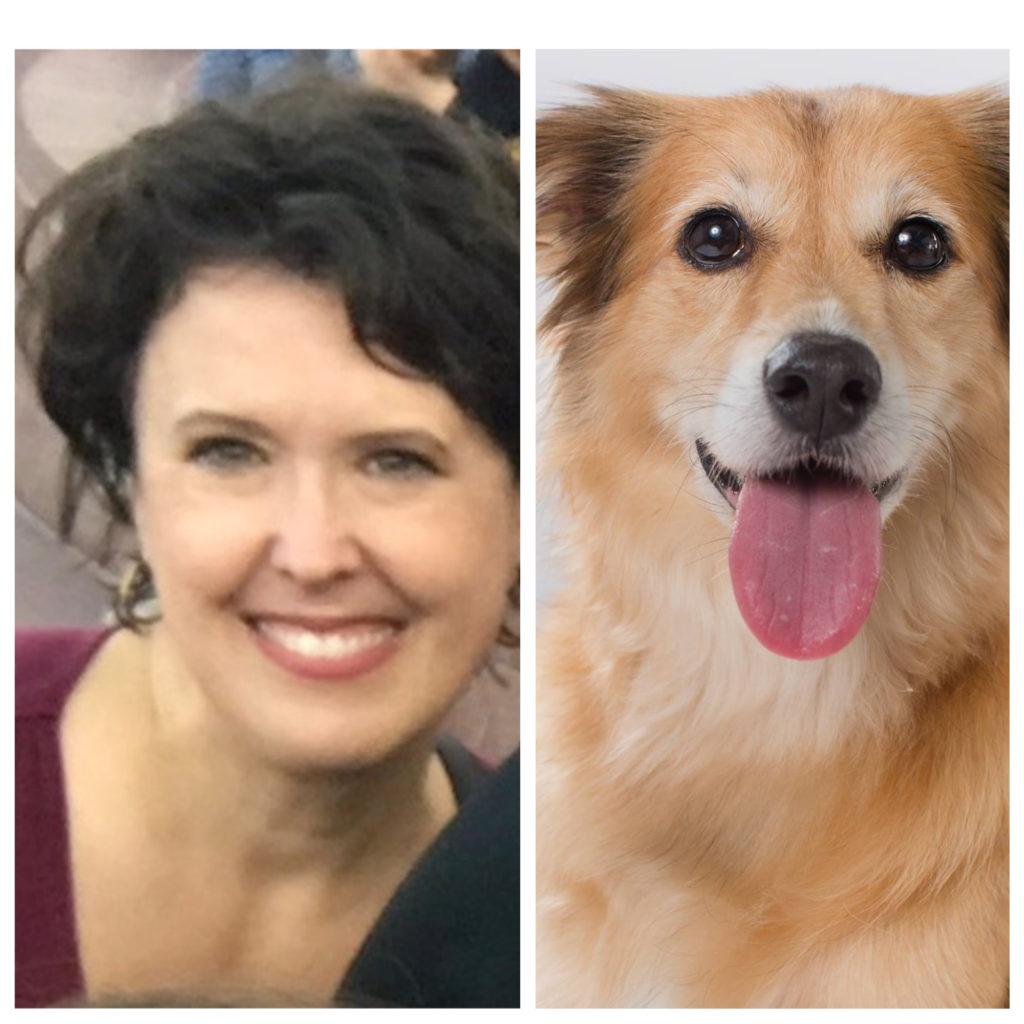 Nicki's Central West End Guide CWE Pets Services  St. Louis Pets for Vets Pet Impact! MO Jennifer Maurer Dr. Pam Clary CWE Veterinary Clinic Central West End