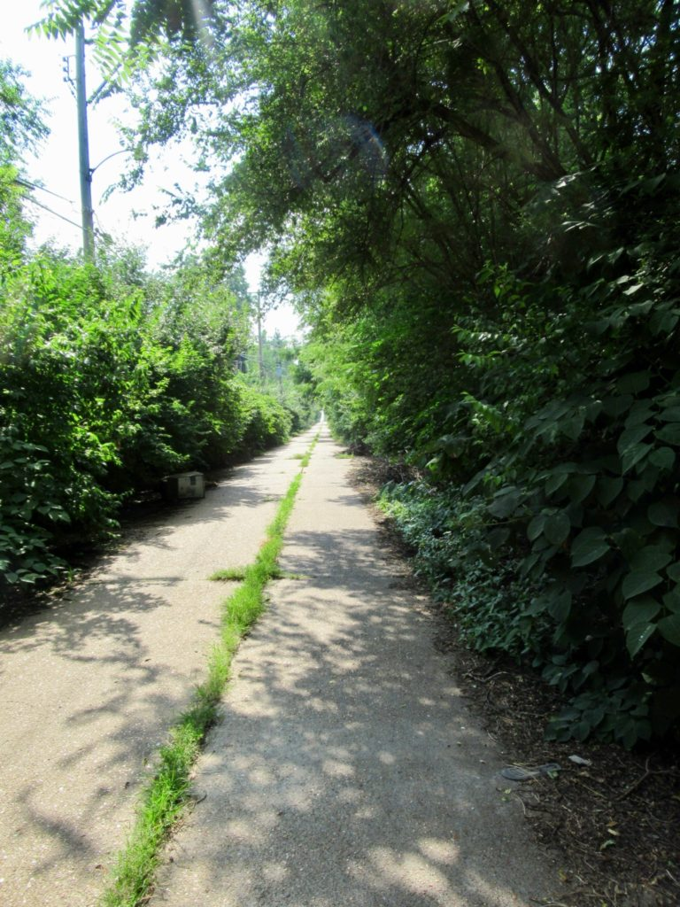 Nicki's Central West End Guide Events, Sightings Services Urban Gardens  Operation Brightside Judith Arnold Hodiamont Tracks Great Rivers Greenway